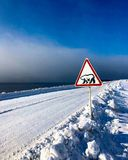Warning sign polar bears, Spitsbergen royalty free stock image