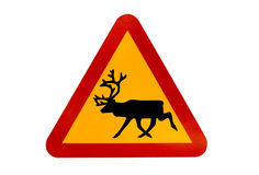 Warning sign for reindeers Royalty Free Stock Photography