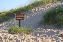 Warning sign on sand dunes. No glass containers or animals warning sign on beach with sand dunes in background Royalty Free Stock Photo
