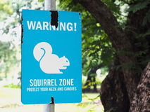 Warning sign of squirrel zone Royalty Free Stock Photography