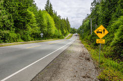 Warning Sign on a Straight Forest Road Royalty Free Stock Photography
