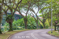Warning signs to slow down on a curving road Stock Photos