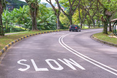 Warning signs to slow down on a curving road Stock Images