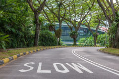 Warning signs to slow down on a curving road Stock Image