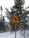 Warning. A skier caution sign in Idre mountain royalty free stock images