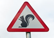 Warning... Squirrels!!. A roadsign warning of crossing squirrels on the road Royalty Free Stock Images