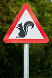 Warning... Squirrels!!. A roadsign warning of crossing squirrels on the road Stock Photography