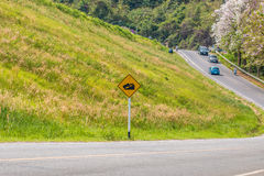 Warning steep road sign slope and truck on hill. The warning steep road sign slope and truck on hill royalty free stock photography