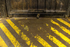 Warning Stripes by the Freight Elevator. Grunge Warning Stripes by the Freight Elevator Stock Image
