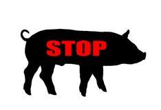 Warning swine flu. On a white background Royalty Free Stock Photo