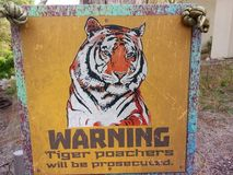 WARNING! - Tiger poaches will be prosecuted!. The tiger is the largest cat species, most recognizable for its pattern of dark vertical stripes on reddish-orange Stock Photos