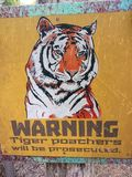 WARNING! - Tiger poaches will be prosecuted! - Russia. The tiger is the largest cat species, most recognizable for its pattern of dark vertical stripes on Stock Image