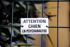 Warnung! Hund in der Psychoanalyse stockfotografie