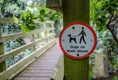 Warnzeichen, damit Hundebesitzer dort Hunde auf seiner Führung halten lizenzfreies stockbild