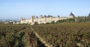 Warowny miasto Carcassonne Fotografia Royalty Free