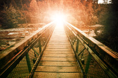 Warp light at the end of suspension bridge crossing steam in wil Royalty Free Stock Photos