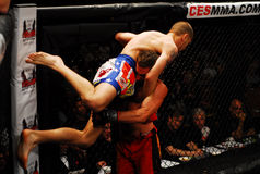Warr v. Evans, Mixed Martial Arts. Royalty Free Stock Image