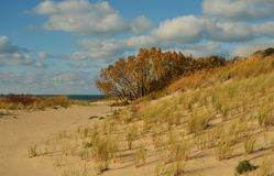 Warren Dunes State Park op Meer Michigan stock foto's