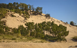 Warren Sand Dunes Royalty Free Stock Image