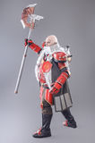 Warrior in the Armor with Axe Stock Photography