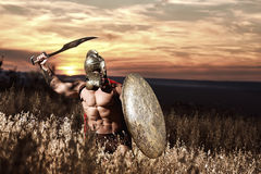 Warrior in helmet with bare torso going in attack. Confident soldier like spartan in red cloak holding iron weapon and rounded shield. Warrior in bronze helmet royalty free stock photos