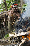 Warrior of a Papuan tribe Stock Images
