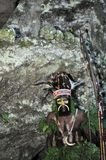 The warrior of a Papuan tribe of Yafi in traditional clothes, ornaments and coloring. New Guinea Island, Indonesia. Stock Photos