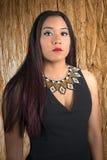 Warrior Princess Stock Images