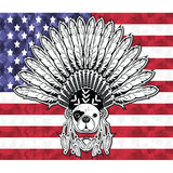 Warrior style French bulldog with tribal Headdress with plain feathers in white and black symbolizing native American people and I Stock Image