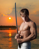 Warrior at sunset Stock Photography
