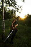 Warrior and sunset stock photography
