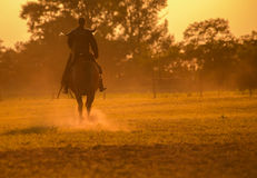 Warrior in sunset. Riding warrior in sunset silhouette Royalty Free Stock Images
