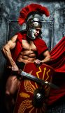 Warrior with trained body holds swor and shield. Roman warrior with muscular body holding sword and shield Stock Image
