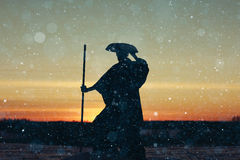 Warrior in winter sunset Stock Photography