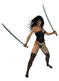 Warrior Woman Stock Images