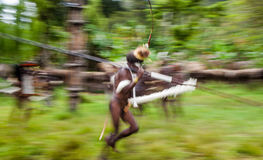 Warriors Dani tribe portray staging a fight with each other. Stock Photography