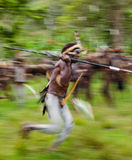 Warriors Dani tribe portray staging a fight with each other. Stock Photo
