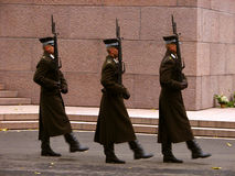Warriors on duty Royalty Free Stock Image