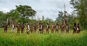 Warriors of a Papuan tribe Royalty Free Stock Photo