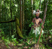 The warriors of a Papuan tribe of Yafi in traditional clothes, ornaments and coloring. New Guinea Island, Royalty Free Stock Photos