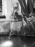 Warsaw. Fountain in Warsaw garden during summer Royalty Free Stock Photo