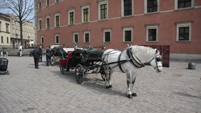 Warsaw Old town. Poland. tourist place visited by great amout of people stock video