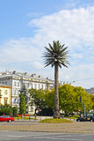 WARSAW, POLAND. An artificial palm tree on Charles de Gaulle`s outcome near Sredmestye. WARSAW, POLAND - AUGUST 23, 2014: An artificial palm tree on Charles de Stock Images