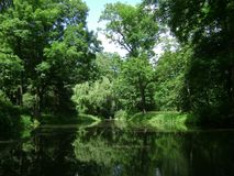 Warsaw, Poland, Park, Forest, Trees Royalty Free Stock Photography