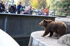 Warsaw Zoo Stock Image