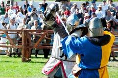 Warschau, Polen - Mai 2012: Das dritte internationale Festival von h Lizenzfreies Stockbild