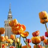 Warschau-Zusammensetzung lizenzfreie stockbilder