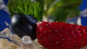 Warstwa tort z mennicą, truskawka, czarna jagoda Smakowity warstwa tort, makro- zdjęcie wideo