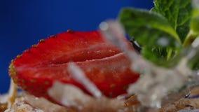 Warstwa tort z mennicą, truskawka, czarna jagoda Smakowity warstwa tort, makro- zbiory wideo