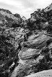 Warstwy na warstwy rockowi szczyty w czarny i biały, usa Fotografia Stock